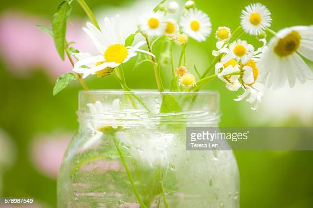 Fresh wildflowers in a glass jar