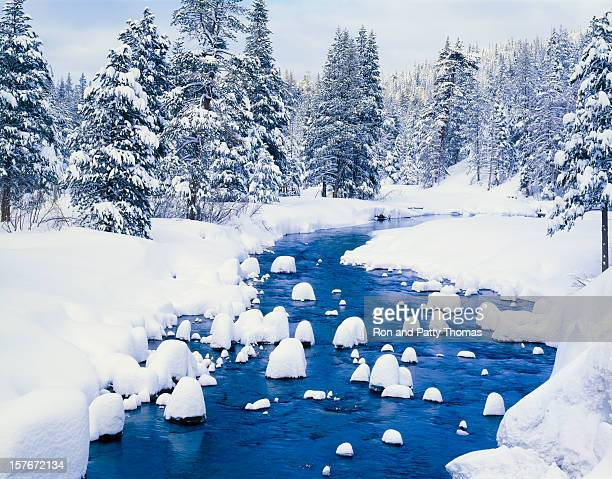 Fresh Winter Snow Covers Forest With River