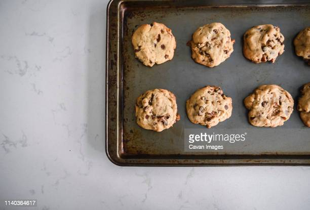 freshly baked chocolate chip cookies cooling on a sheet pan shot from - cookie stock pictures, royalty-free photos & images