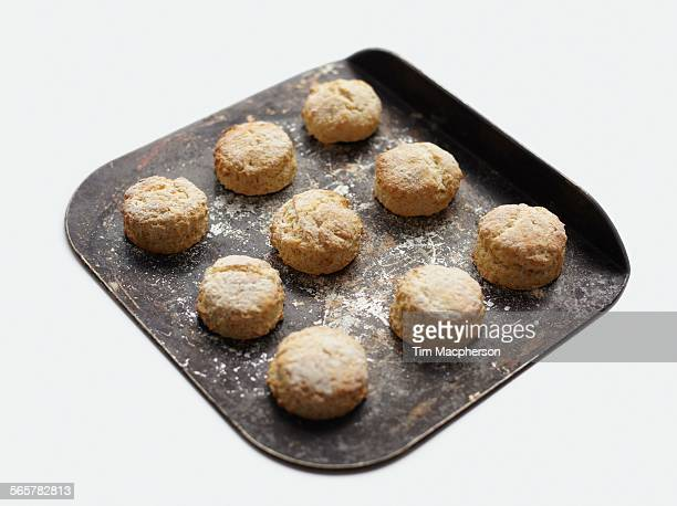 freshly baked scones on baking tray - medium group of objects stock pictures, royalty-free photos & images