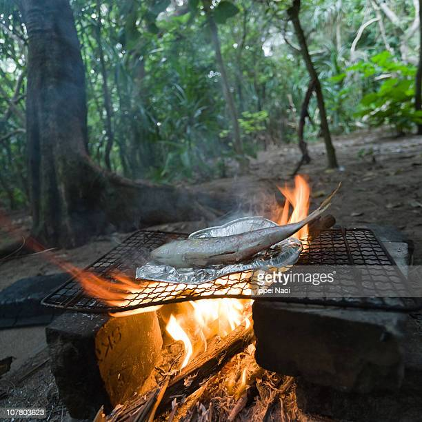 Freshly caught fish cooking on camp