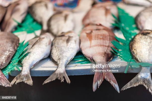 freshly caught fish, squid, srimp and other seafood for sale on a counter - istock photos et images de collection