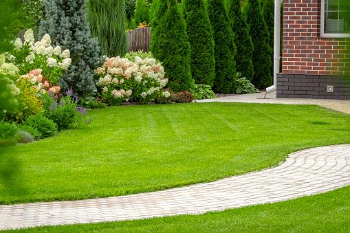 Freshly cut grass 1192014583