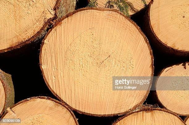 Freshly cut spruce logs, piled wood awaiting removal near Raubling, Bavaria, Germany, Europe