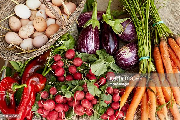 freshly harvested vegetables at organic farm - food staple stock pictures, royalty-free photos & images