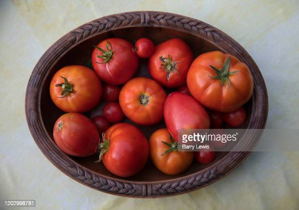 Freshly picked fresh garden tomatoes on a wooden dish on 8th August 2017 in Lagrasse France A member of the nightshade family tomatoes are in fact a...