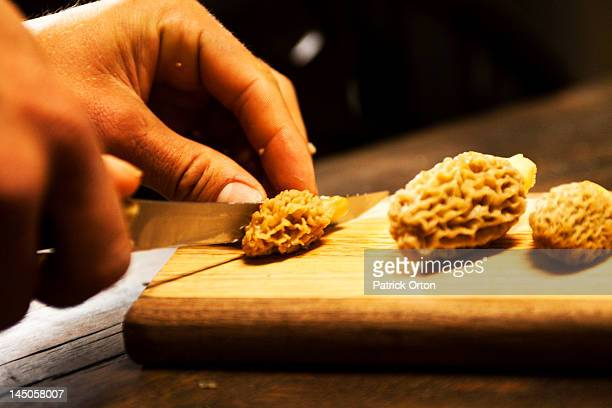 freshly picked morel mushrooms are sliced in half in montana. - morel mushroom stock pictures, royalty-free photos & images