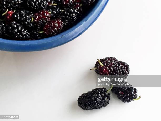 freshly picked mulberries on white tabletop - マルベリー ストックフォトと画像