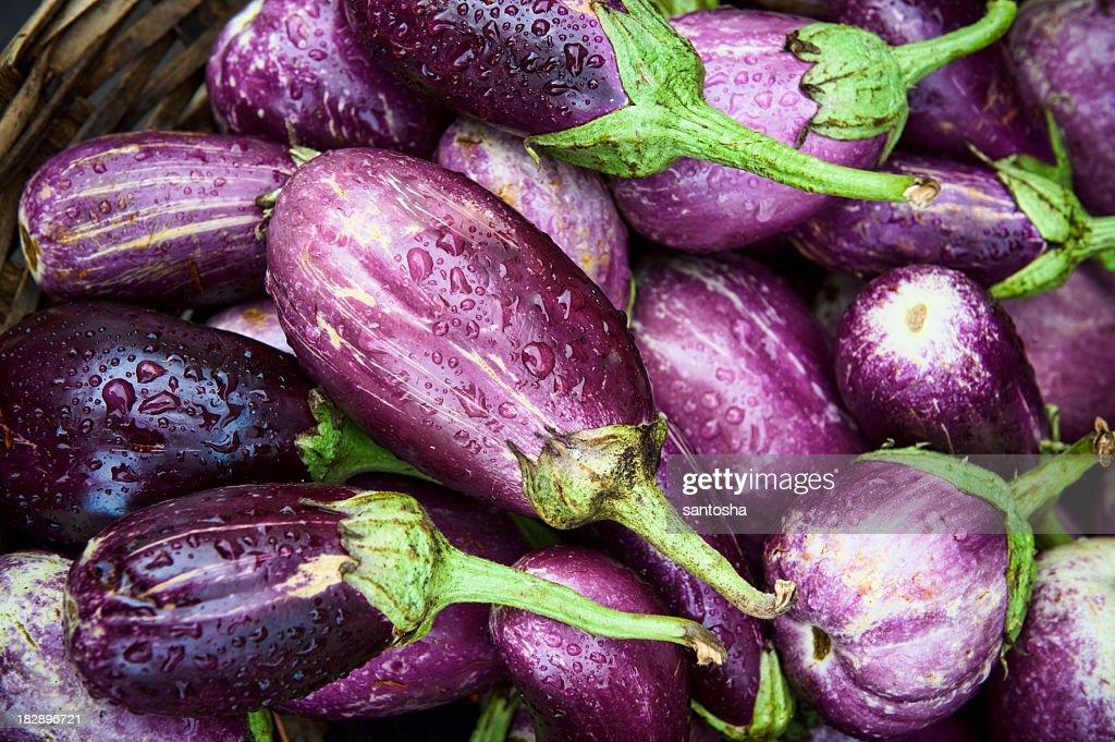 Freshly picked organic eggplants : Stock Photo