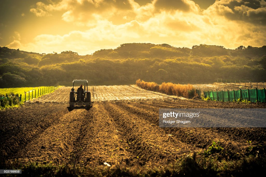 Freshly ploughed field with a tractor sewing new seeds : Foto de stock