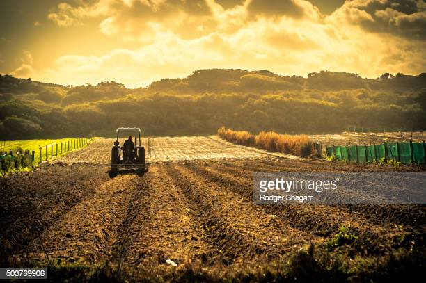 Freshly ploughed field with a tractor sewing new seeds