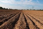 Freshly plowed field