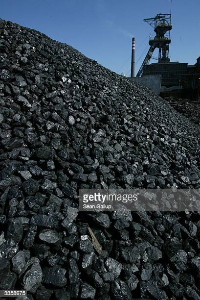 Freshlymined high quality coal awaits transport at the Wieczorek coal mine April 14 2004 in Katowice Poland Poland will be the largest producer of...