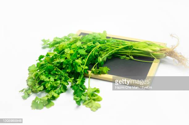 freshness coriander leaves on wooden blackboard - frische stockfoto's en -beelden