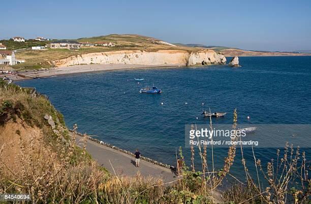 freshwater bay, isle of wight, england, united kingdom, europe - freshwater bay isle of wight ストックフォトと画像