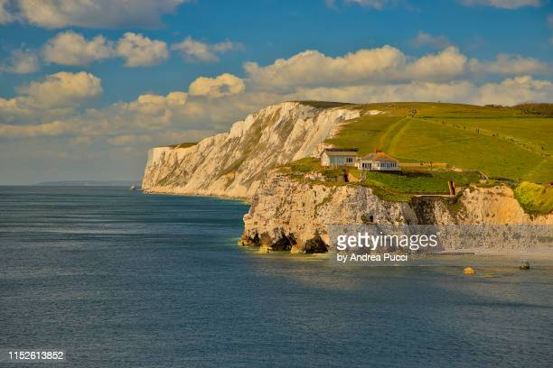 freshwater bay, isle of wight, united kingdom - isle of wight stock pictures, royalty-free photos & images