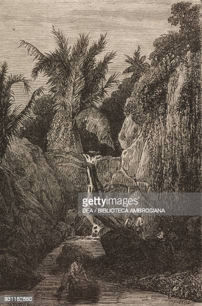 Freshwater spring Ambon island drawing by Sorrieu from The Malay Archipelago 18611862 by Alfred Russell Wallace from Il Giro del mondo Journal of...