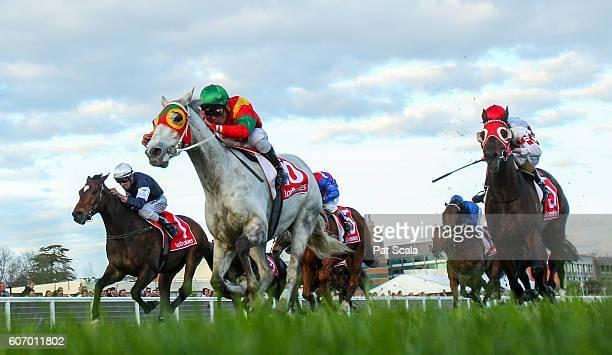 Freshwater Storm ridden by Michael Walker wins Mortimer Petroleum Gold Nugget at Caulfield Racecourse on September 17 2016 in Caulfield Australia