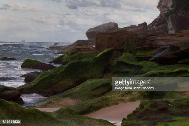 Freshwater - The Rocks