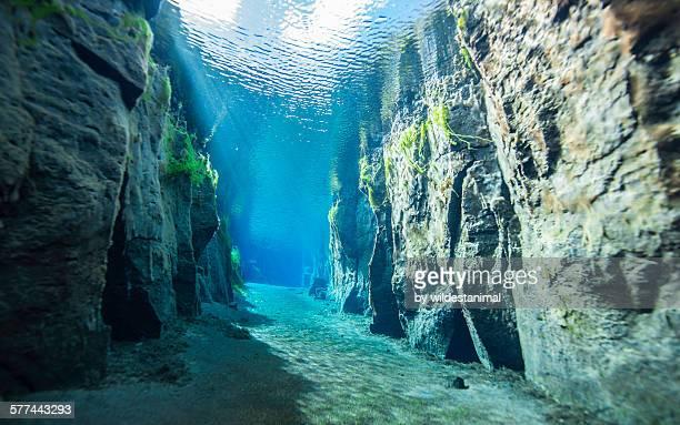 freshwater visibility - unterwasseraufnahme meer stock-fotos und bilder