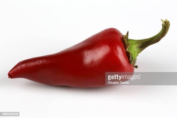 fresno chili pepper (capsicum annuum) - jalapeno stock-fotos und bilder