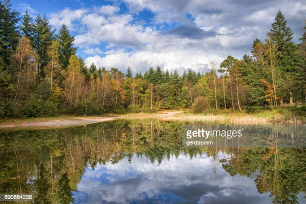 Frest lake, Hesel, Leer, Lower Saxony, Germany