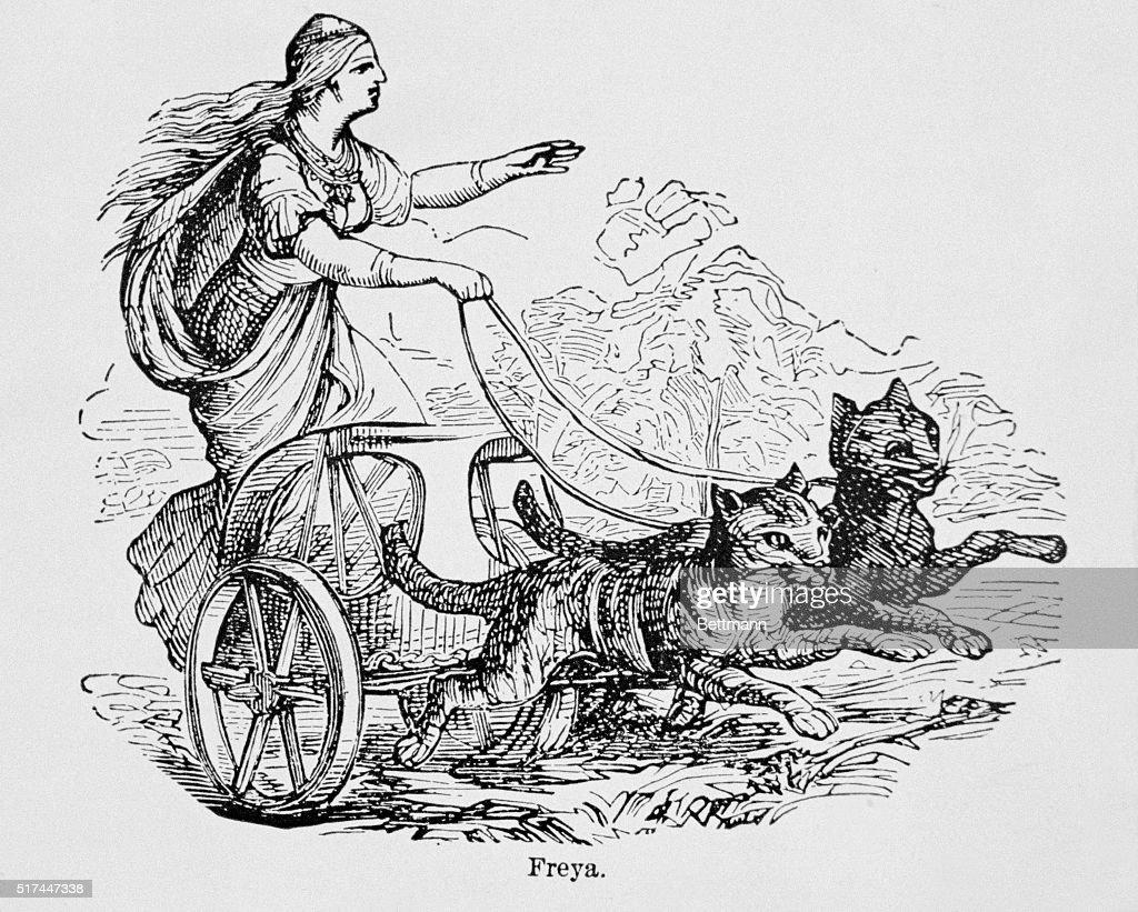 freya in cart driven by two cats in norse