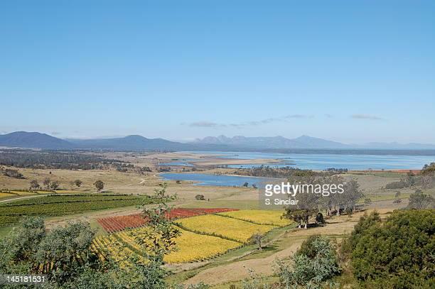 Freycinet national park over tasmanian vineyards