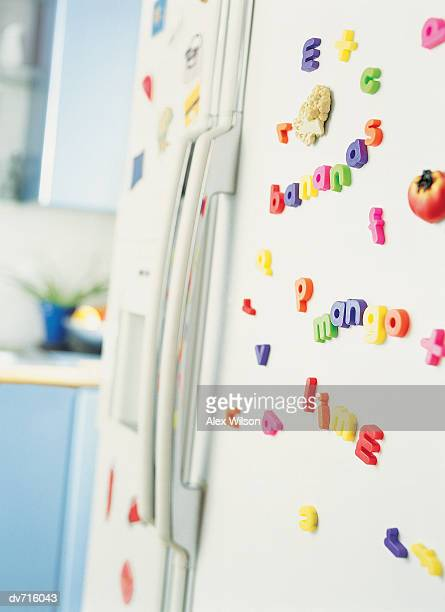 Fridge Magnets on a Refrigerator