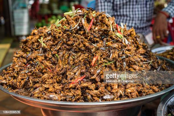 "fried crickets for sale on market stall in skuon, phnom penh, cambodia - cambodia ""malcolm p chapman"" or ""malcolm chapman"" stock pictures, royalty-free photos & images"