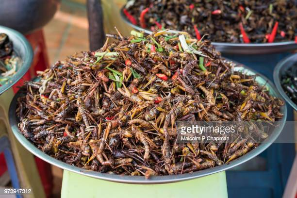 Fried crickets on sale at market stall, Skuon, Cambodia