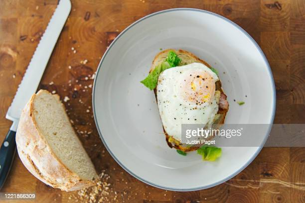 fried egg on homemade toasted bread - bread stock pictures, royalty-free photos & images