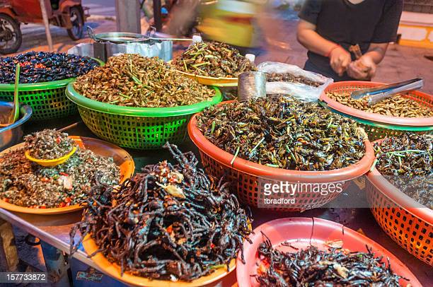 fried insects and bugs for sale in phnom penh, cambodia - cricket insect stock photos and pictures