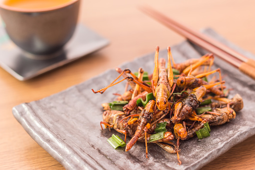 Fried insects 636625780