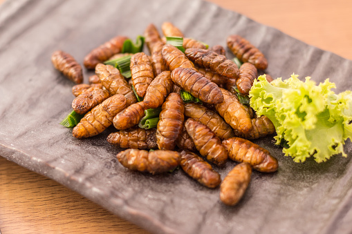 Fried insects 636626012