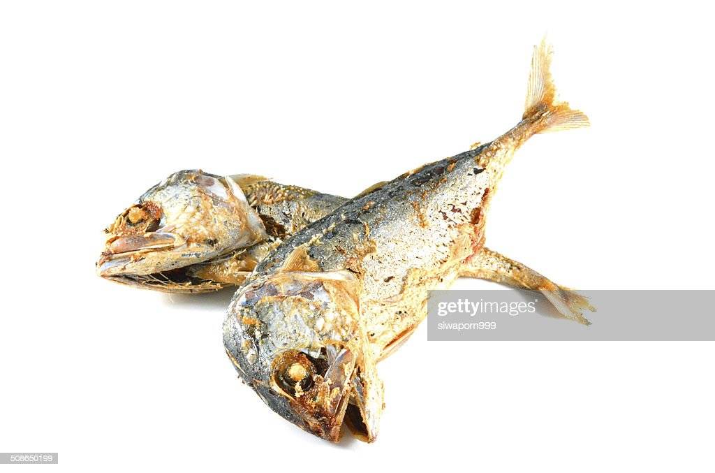 Fried Mackerel fish close up : Stock Photo