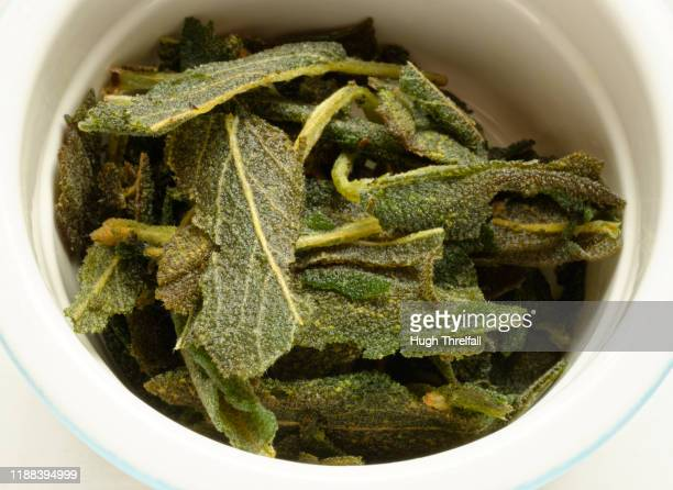 fried sage leaves in butter. - hugh threlfall stock pictures, royalty-free photos & images