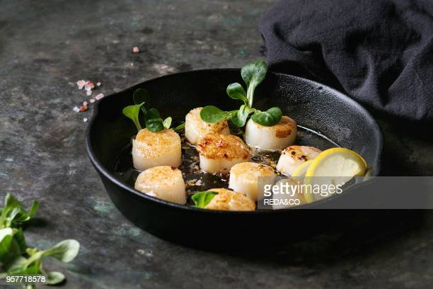 Fried scallops with butter lemon spicy sauce in castiron pan served with green salad and textile napkin over old dark metal background