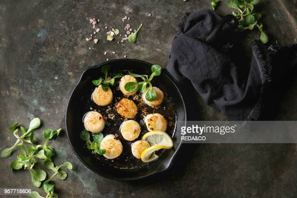 Fried scallops with butter lemon spicy sauce in castiron pan served with green salad and textile napkin over old dark metal background Top view space