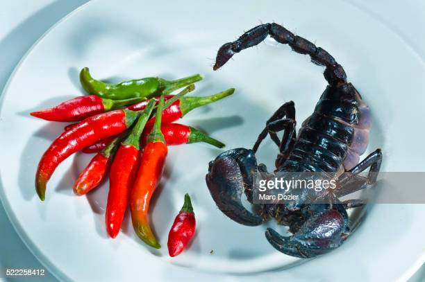 Fried scorpion in Ho Chi Minh city (Saigon)
