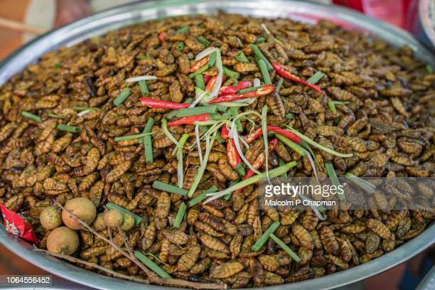 Fried Silk Worms on market stall, near Phnom Penh, Cambodia
