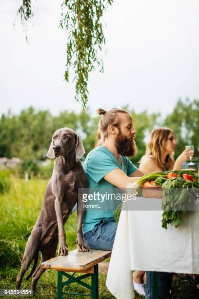friends and their dog having lunch outdors - thanksgiving dog stock photos and pictures