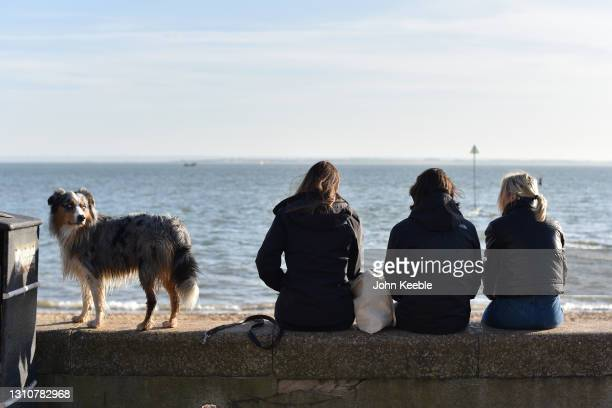 Friends and their dog sit on the sea wall on a warm sunny Easter Sunday at Chalkwell beach on April 04, 2021 in Southend-on-Sea, England. Earlier...