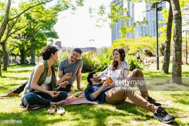 amis au pique-nique un après-midi ensoleillé - petit ami photos et images de collection
