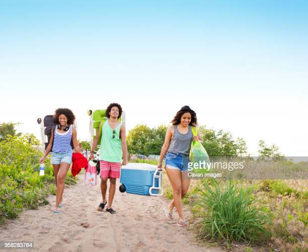 friends carrying ice box and chairs while walking at beach against clear sky - woman carrying tote bag stock photos and pictures