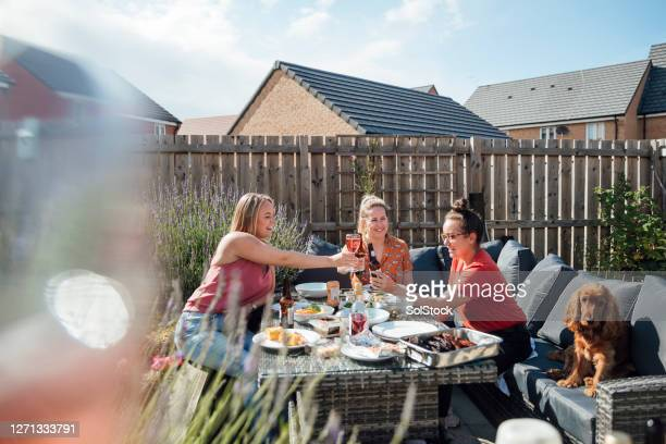 friends celebrating together - garden stock pictures, royalty-free photos & images