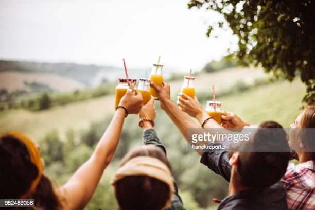 friends cheering orange juices outdoors togetherness - juice drink stock pictures, royalty-free photos & images