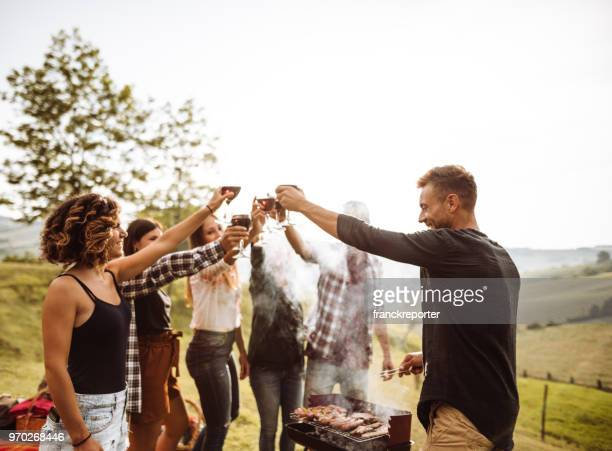 friends cheering togetherness during the pic nic - barbecue social gathering stock pictures, royalty-free photos & images