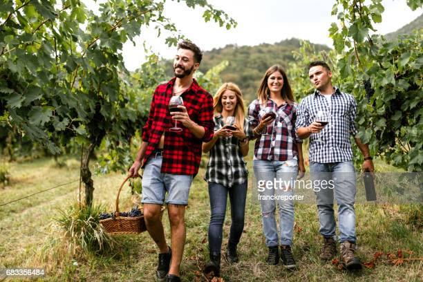 friends do a wine tasting in the vineyard