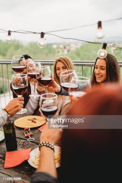 vrienden het doen van een feestelijke toast tijdens het diner op het dak thuis - patio stockfoto's en -beelden